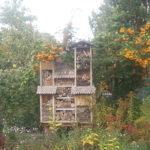 Gärtnern auf Hochbeeten 3