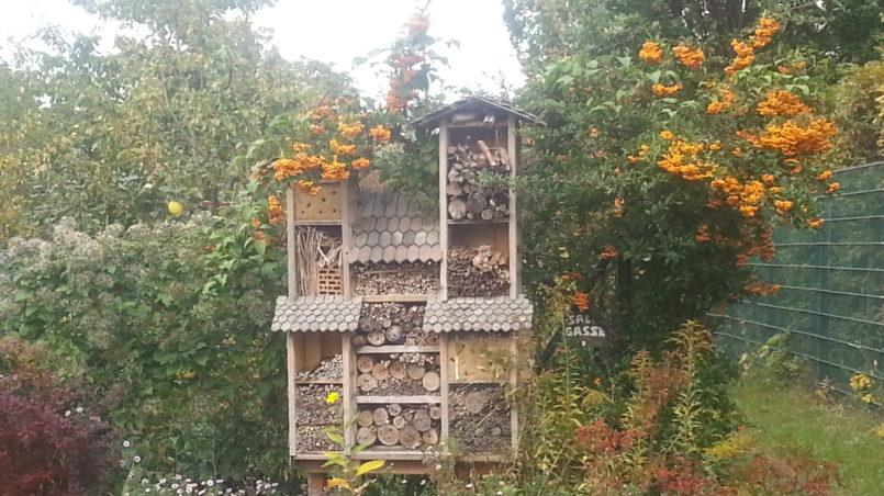 Insektenhotel abgefackelt 1