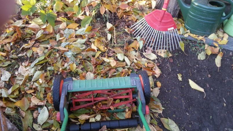 Laub kompostieren 1